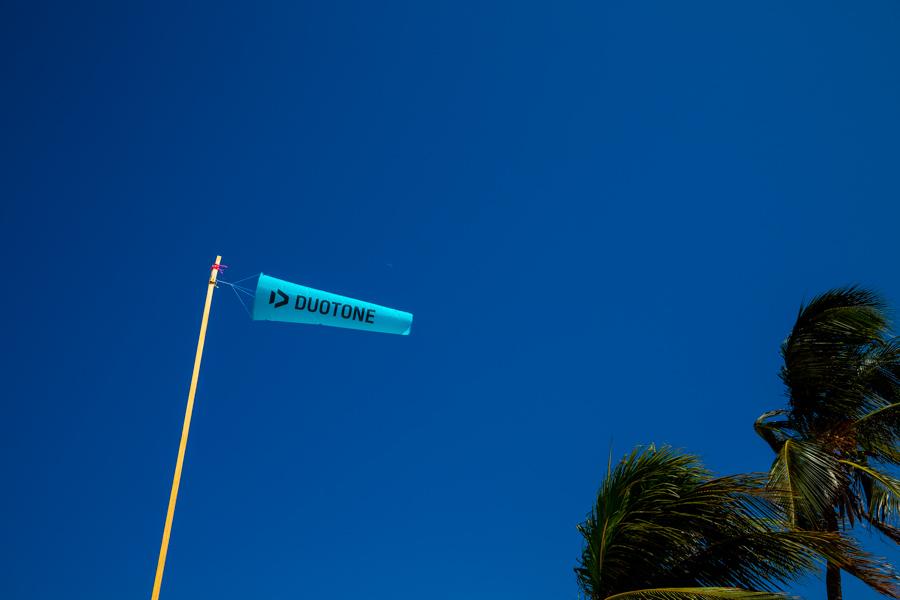Festival Kite - 003